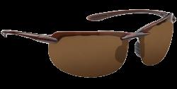 Hobie Polarized Sunglasses Pico 252528 Copper Sport Lens